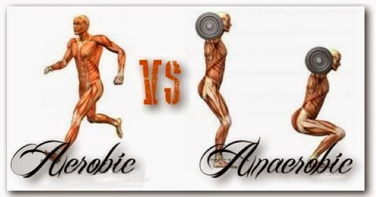 anaerobic-vs-aerobic